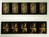 191017008